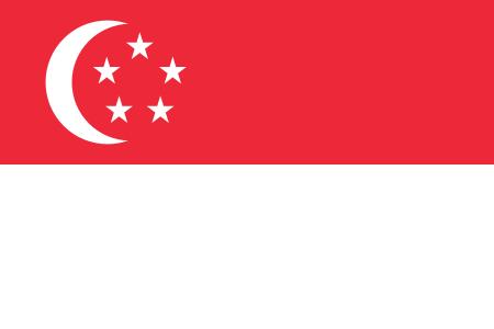 新加坡海运空运专线